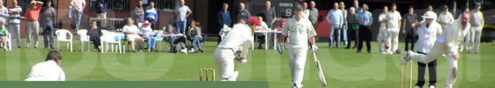 Contact Us | Chew Magna Cricket Club |  Somerset | England | UK